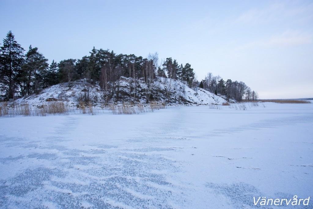 Saxholmen kanske blir ett objekt som jag kommer jobba med i år. Jag besökte ön häromdagen för att inspektera ev. åtgärder.